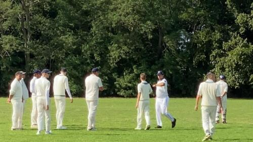 Crossbats CC V Whitton